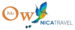 Mr-Ow-Nica-Travel-Logo